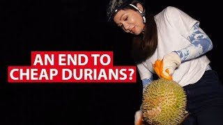Download An End To Cheap Durians From Malaysia? | Talking Point | CNA Insider Video