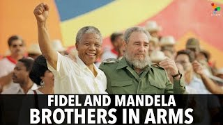Download Fidel And Mandela: Brothers in Arms Video