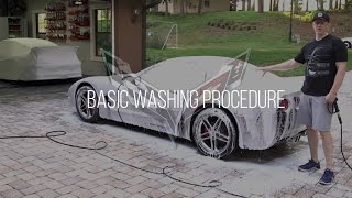 Download Village Vettes May Meeting: Basic Washing Procedure Video
