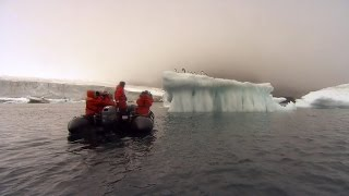 Download Scientists document glaciers melting in Antarctica Video