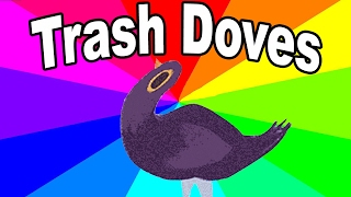 Download What is the trash dove? The history and origin of the facebook bird meme explained Video