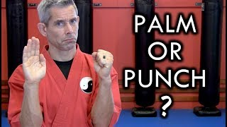 Download Should You Palm Heel or Punch in a Real Fight? Video