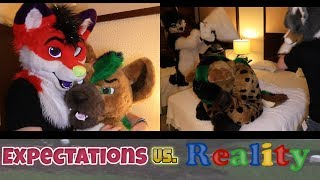 Download Furry Cons: Expectations vs Reality Video