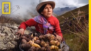 Download From Farm to Table | Nat Geo Live Video