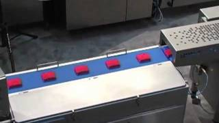 Download Mutlivac Thermoform fill seal packaging, Bizerba check weigher, Multivac H O50, T 850, R 245, Video