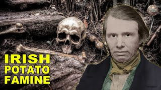 Download A Timeline Of The Potato Famine That Changed Ireland Forever Video
