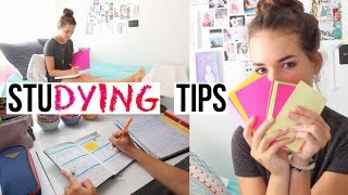 Download Studying Tips for This School Year! | Reese Regan Video