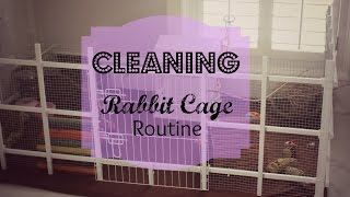 Download How I Clean Rabbit Cage Routine 2015 Video