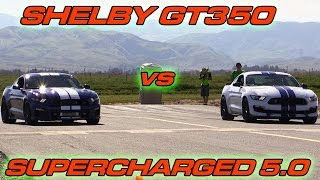 Download Shelby GT350 vs Supercharged Mustang GT 5.0 Video