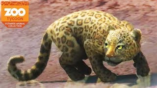 Download NEW ANIMALS, NEW ZOO! | Zoo Tycoon : Ultimate Animal Collection #1 Video