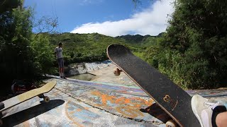 Download SECRET Jungle Skate Spot! Video