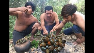 Download Survival Technique Cooking Snail on Rock - Searching Snail Cook For Food Eating delicious Video