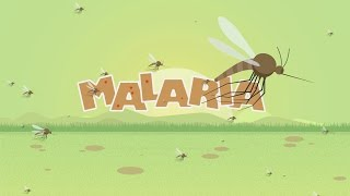 Download Malaria Animated Video