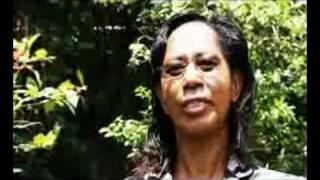 Download Thika Greens Brief Video