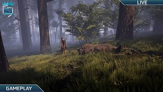 Download Finding Bigfoot with MashStars! | Multiplayer Horror! | 1080p 60FPS! Video