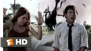 Download Infestation (6/10) Movie CLIP - The Swarm Attacks (2009) HD Video