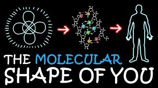 Download The Molecular Shape of You (Ed Sheeran Parody) | A Capella Science Video