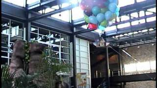 Download UP Press Junket, Highlights! Flying House & Balloons, PIXAR Atrium - Method 42 Productions.wmv Video