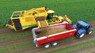 Download Potato Harvest | PLOEGER AR-4BX + Fendt & New Holland | Demijba / Van Peperstraten Video