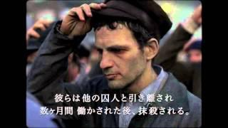 Download 映画『サウルの息子』予告編 Video