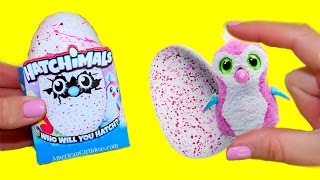 Download DIY Hatchimals Miniatures | How to make Doll Hatchimals Video