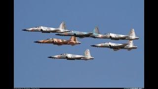 Download DCS: F-5N Tiger II Video