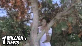Download Sendoora Poove Video Song   16 Vayathinile   Sridevi, Kamal Haasan   Ilaiyaraaja   S. Janaki Video