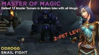 Download Odrogg - Master of Magic (2-Pet Levelling Team) Video