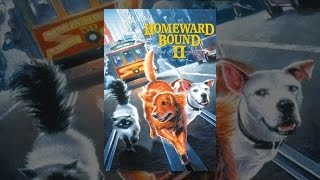 Download Homeward Bound II: Lost In San Francisco Video