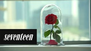 Download These Real Enchanted Roses Will Last 3 Magical Years Video