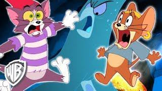Download Tom y Jerry en Español | ¡Trampas para la mente! | WB Kids Video