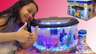 Download Aquarium Starter Kit Fun With Alanna! Video