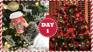 Download Vlogmas 2016 ❄ Day 1 | Early Mornings & NYC Christmas Tree Video