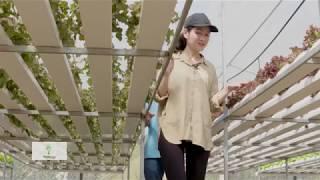 Download VƯỜN RAU THỦY CANH 100M2 ƯƠM CÂY NON TRÊN XỐP THEO CÔNG NGHỆ ISRAEL Video