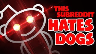 Download This Subreddit HATES DOGS Video