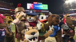 Download Watch the Pac-12 Mascots dance off on the field at Levi's Stadium in VR180 Video