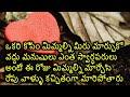 Download Telugu prema kavithalu | Suresh bojja | telugu love failure kavithalu | telugu love quotation | Video
