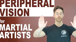 Download Peripheral Vision Training for Martial Artists Video