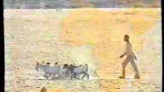 Download 'Africa In Crisis' DEC Appeal , Trevor McDonald, 1992, ITV Video