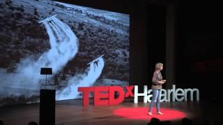 Download How law can save the Earth. | Femke Wijdekop | TEDxHaarlem Video
