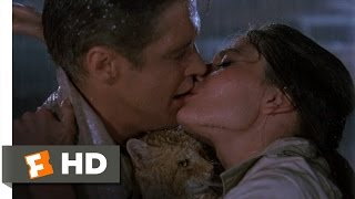Download Breakfast at Tiffany's (9/9) Movie CLIP - Kissing in the Rain (1961) HD Video