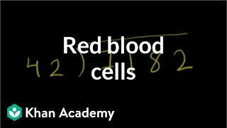 Download Red blood cells | Human anatomy and physiology | Health & Medicine | Khan Academy Video