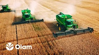 Download OLAM International Russia Video
