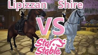 Download Lipizzan VS Shire SPEED TEST - Star Stable Online Video