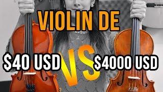 Download Violín de 40 USD vs Violín de 4000 USD ¿Cuál es mejor? Video
