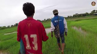 Download ยามเบ็ดปลานาข้าว″ตอนเช้า″[เหยื่อฮวก]ปลดปลาแทบไม่ทัน# หาอยู่หากินแบบ วิถีอีสาน Video