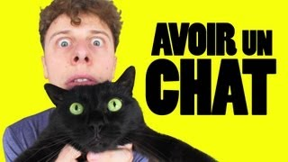 Download NORMAN - AVOIR UN CHAT Video