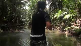 Download Papuan Black Bass fishing 2014 Part-1with Gong Lei Video
