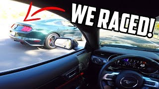 Download 2019 Mustang BULLITT wanted to race my 2019 Mustang GT! Video