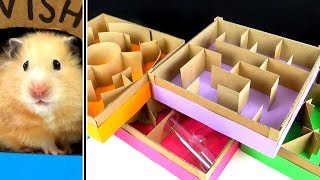 Download 5-level Maze for Hamsters. Who is the BEST? Video